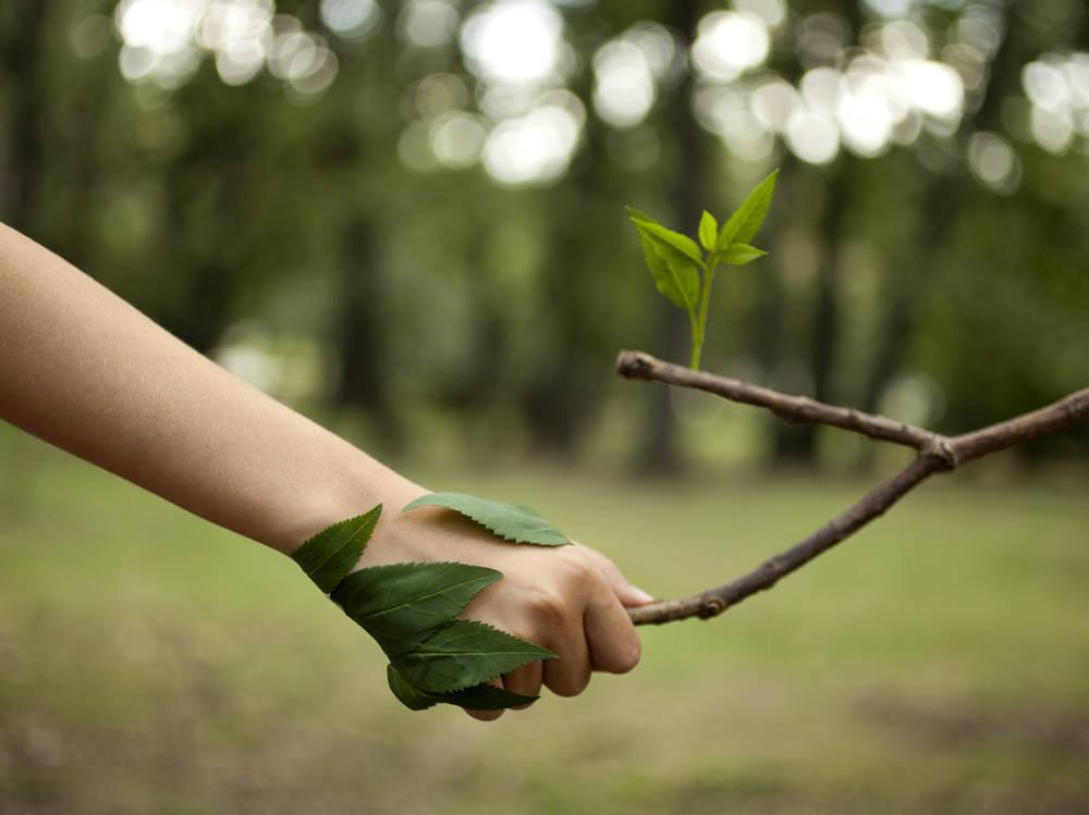 Empresarios concienciados con el medio ambiente